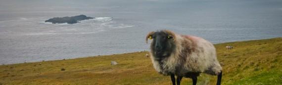Achill Island and Leaving Ireland